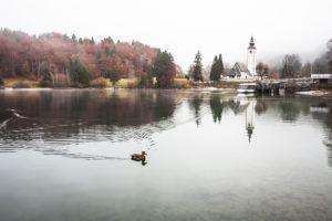 Lago Bohinj-006